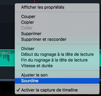 Sourdine audio Filmora 9 pour Mac