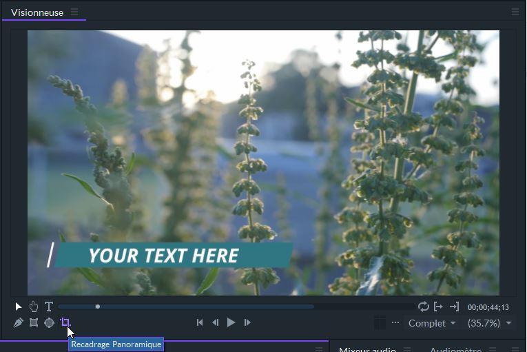 FilmoraPro Recadrage et panoramique