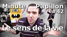 MinutePapillon