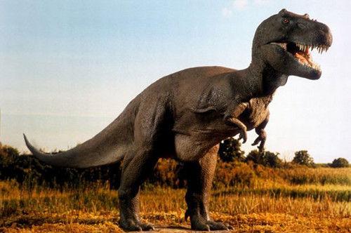Le Dinosaur écran vert