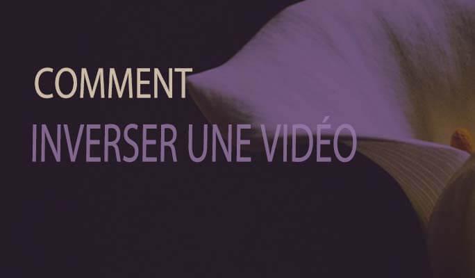 <b>Avis</b> pour <b>Filmora</b> <b>Video</b> <b>Editor</b>