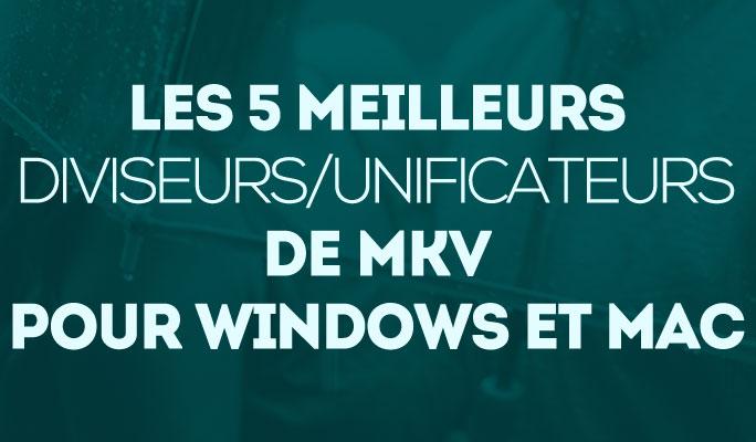 Les 5 meilleurs diviseurs/unificateurs de MKV pour Windows et Mac
