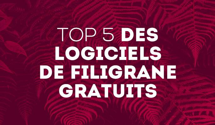 Top 5 des Logiciels de Filigrane Gratuits