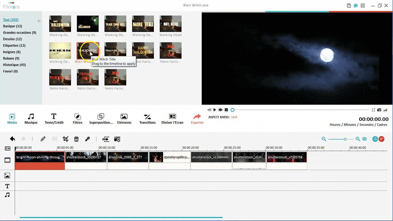 fimlora video editor