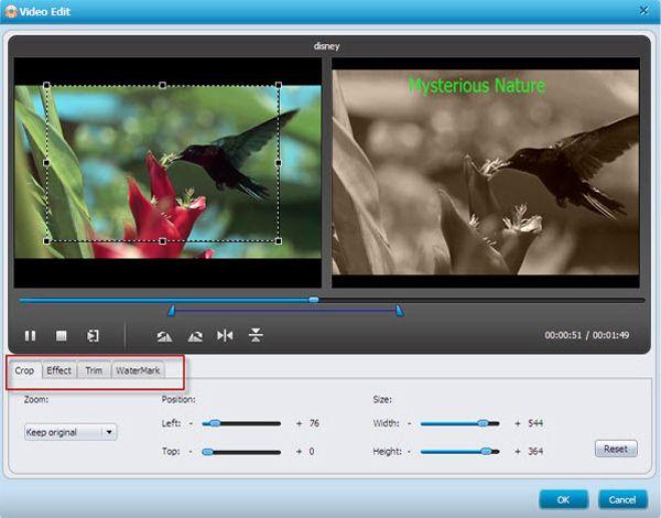 H264 to dvd converter editing