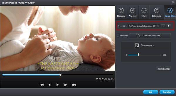 Incruster sous titres SRT/ Personnalisés pour vos vidéos mp4
